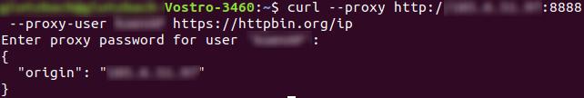proxy in terminal